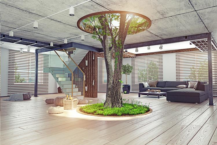design biofilico de escritório